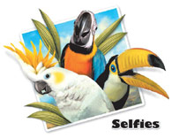 Tropical Bird Selfie